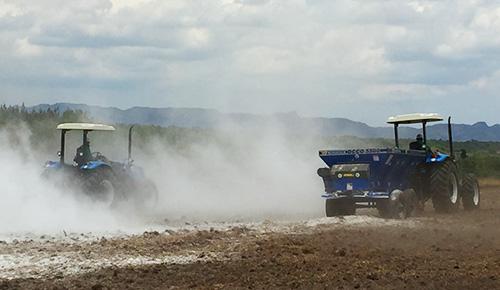 Preparação do solo.
