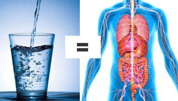 Основні причини, чому так важливо пити воду відразу після пробудження