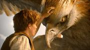 10 казкових фільмів, схожих на «Гаррі Поттера» – з фантастичними світами та героїчними вчинками