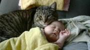 Покинутий малюк довго плакав у своєму ліжечку. Раптова тиша налякала медсестру і та примчала подивитися, що трапилося. У неї в голові було багато думок, але цього побачити вона не очікувала…
