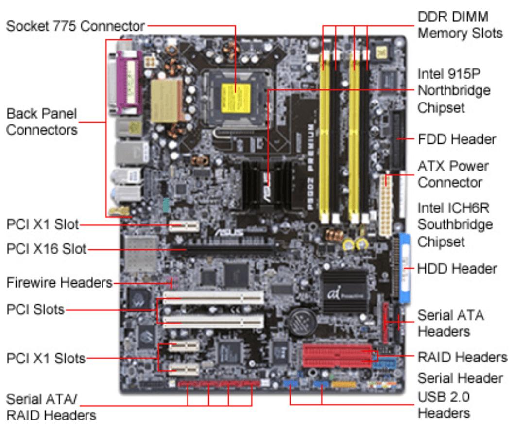 intel motherboard circuit diagram pdf 2001 focus headlight wiring atx great installation of form factors cil532termunde rh wordpress com layout with labels