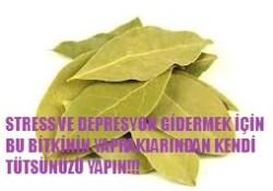 Depresyona iyi gelen tütsü yapımı