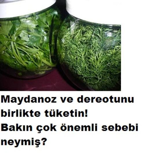 kanser hastalığına karşı 2 yeşillik