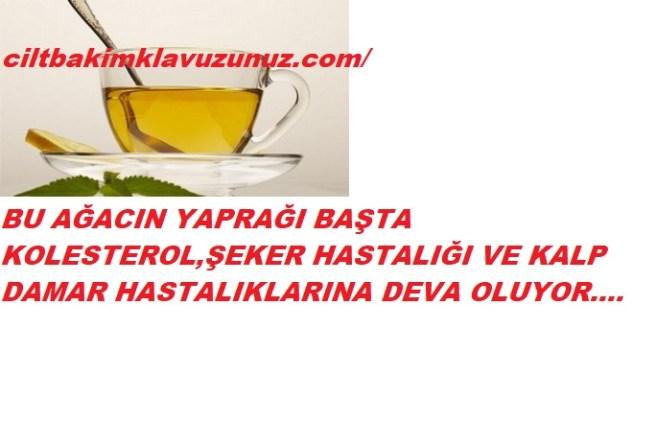 Kolesterolden şeker hastalığına kadar faydası olan yaprak çayı