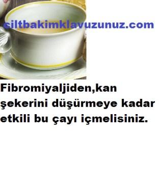 Fibromiyalji Başta Olmak Üzere Bir Çok Hastalığa İyi Gelen Çay