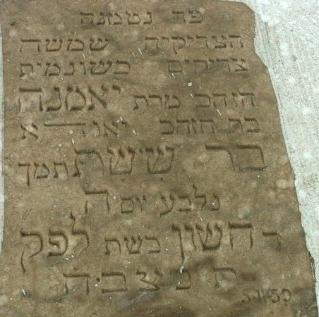 Yamna Barchichat