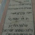 Zohara Levy