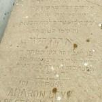 Aharon Levy
