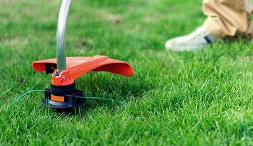 Choosing a Petrol Grass Trimmer In 2020: Ranking the Best in Quality and Price