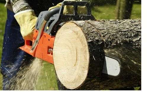 sharpening the chainsaw on the machine