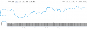 Bitcoin and Altcoins Remain Supported on Dips 101