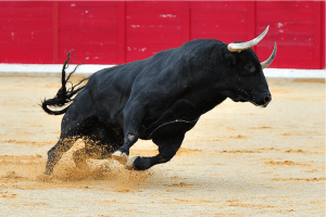 New Crypto Bull Cycle, Ripple's MoneyTap in ATMs + Extra Information