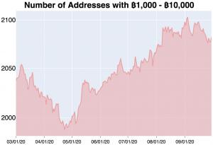 Brace For Higher Bitcoin Volatility and Returns in October - Kraken 103