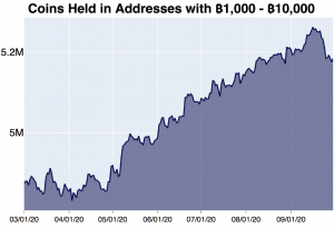 Brace For Higher Bitcoin Volatility and Returns in October - Kraken 104