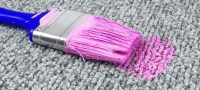 How to Clean Water-based Paint out of Your Carpets ...