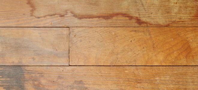 How to Fix Water Damage on a Hardwood Floor  DoItYourselfcom