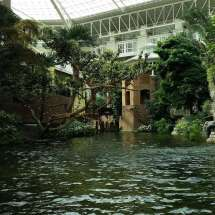 Gaylord Opryland Resort And Convention Center Expert
