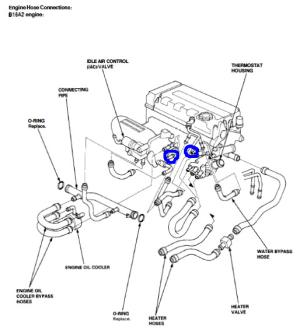 throttle body hose  HondaTech  Honda Forum Discussion