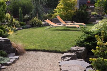 landscaping beginners