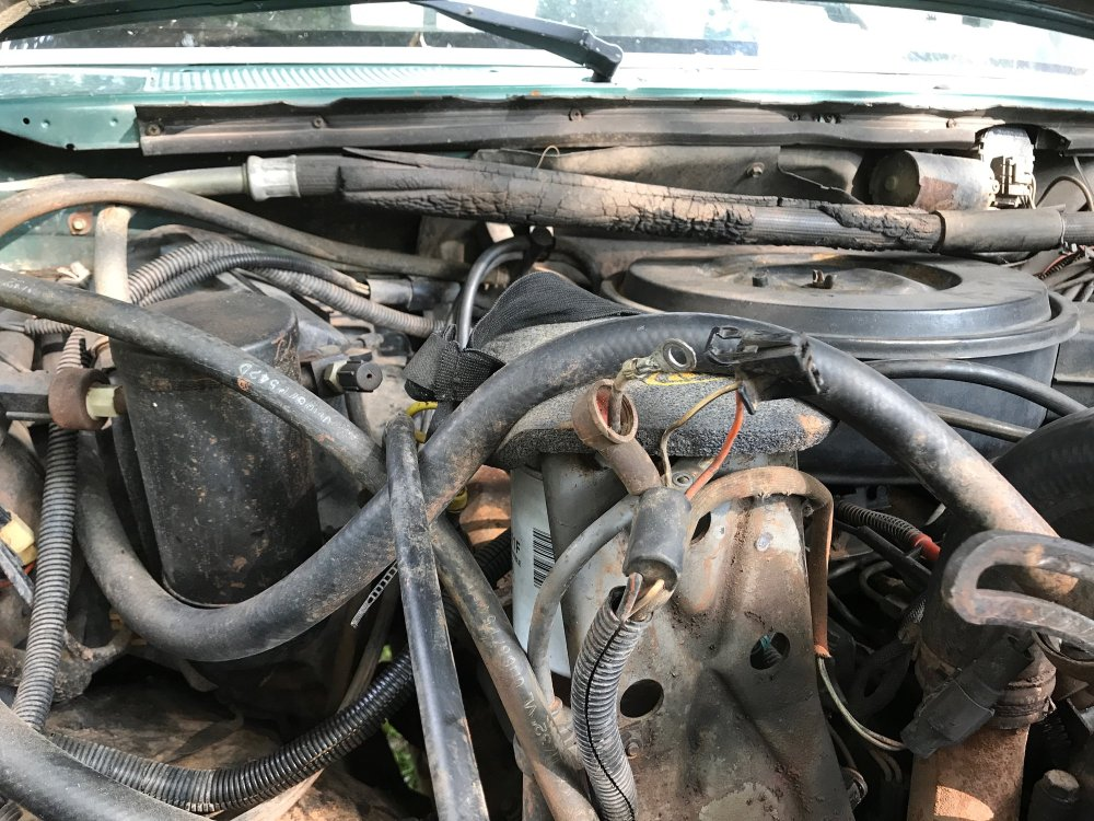 medium resolution of  harness connector to plug in to the alternator and connect to the existing wires does anyone have any advice or tips on what would work for this
