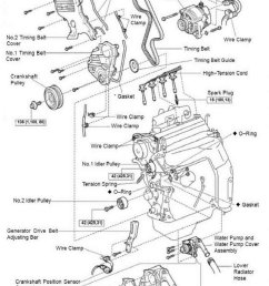 toyota camry 1997 2001 4th generation how to replace timing belt and [ 800 x 1080 Pixel ]