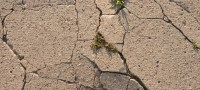 Patio Repair: Mending Cracked Concrete | DoItYourself.com