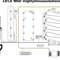 Ls1 Intake Diagram Labeled Brain Amygdala Cooling  Wiring