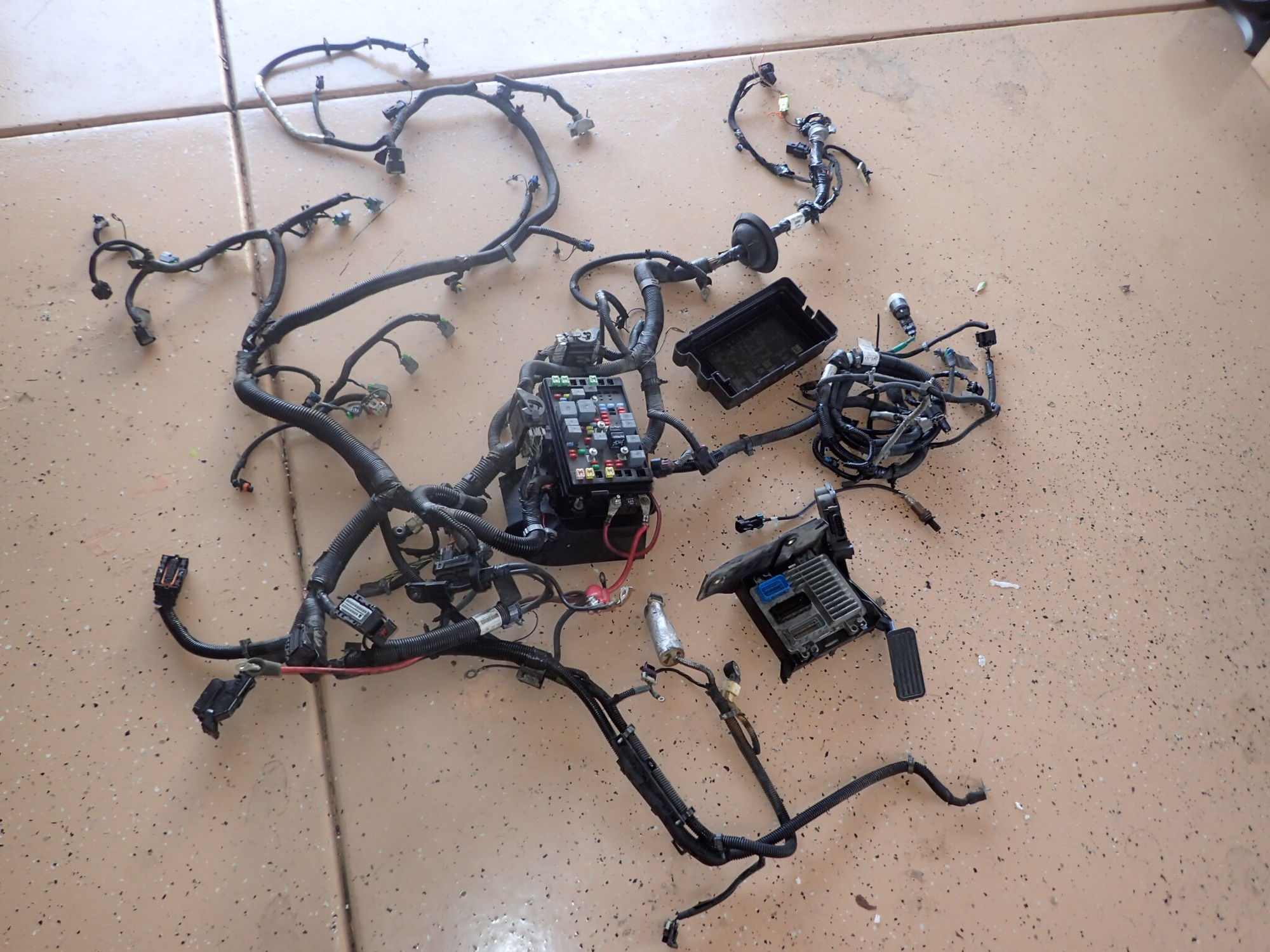 Ls2 Wiring Harness And Ecm Ls2 Wiring Harness Conversion Wiring