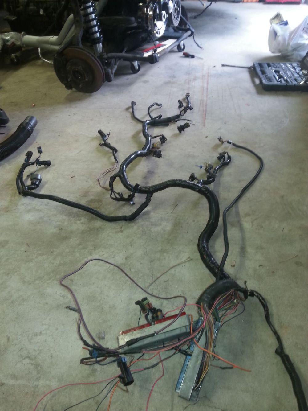 medium resolution of harness for lt1 24x ls1tech camaro and firebird forum 95 lt1 wiring harness lt1 swap harness