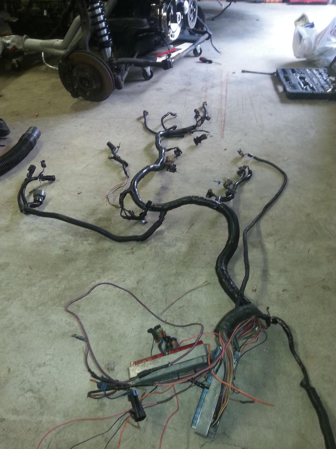 hight resolution of harness for lt1 24x ls1tech camaro and firebird forum 95 lt1 wiring harness lt1 swap harness