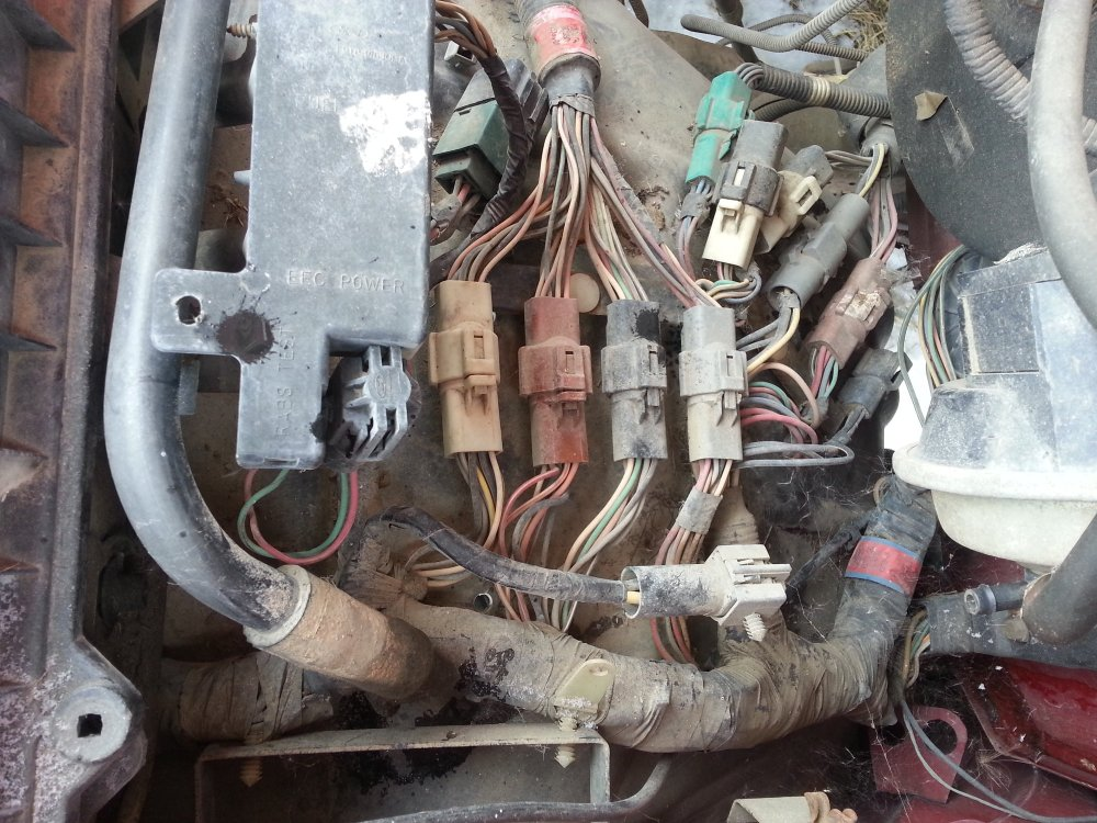 medium resolution of making a stand alone efi harness pics ford truck enthusiasts forums ford efi wiring harness diy