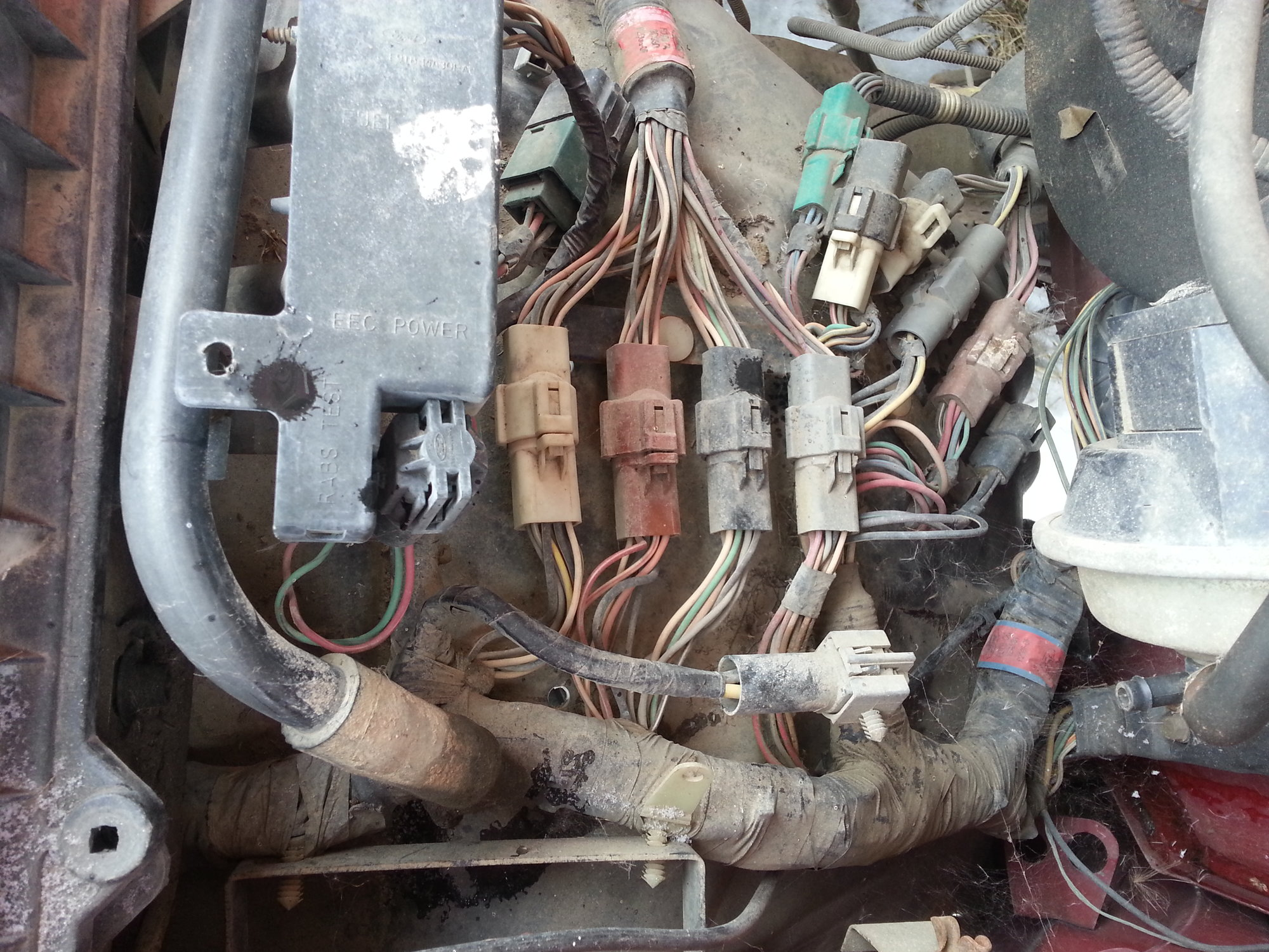 hight resolution of making a stand alone efi harness pics ford truck enthusiasts forums ford efi wiring harness diy