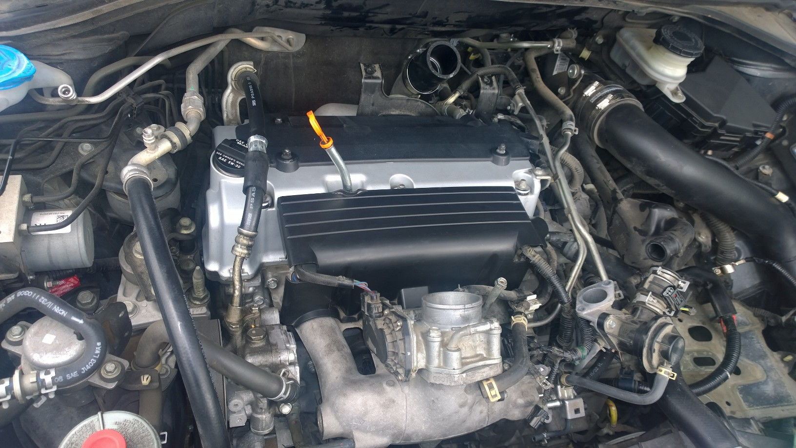 2007 Acura Tsx Engine Diagram 2007 Free Engine Image For User Manual