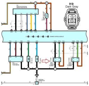 2004 LS430 O2 wiring harness diagram  ClubLexus  Lexus