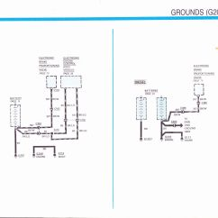 Duraspark Wiring Diagram Ford Typical Plant And Animal Cells Ignition