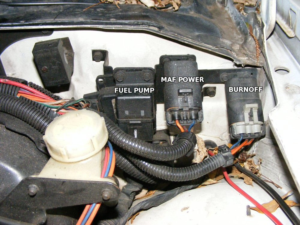 1983 Ford F 150 Ignition Wiring Diagram Which Of These Is Fuel Pump Relay Third Generation F