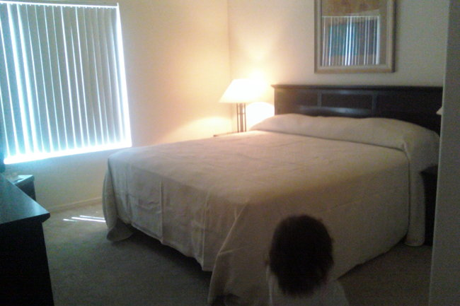 Lakeview at Superstition Springs Apartments  103 Reviews