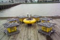 Future Naval Drone Power Pt II