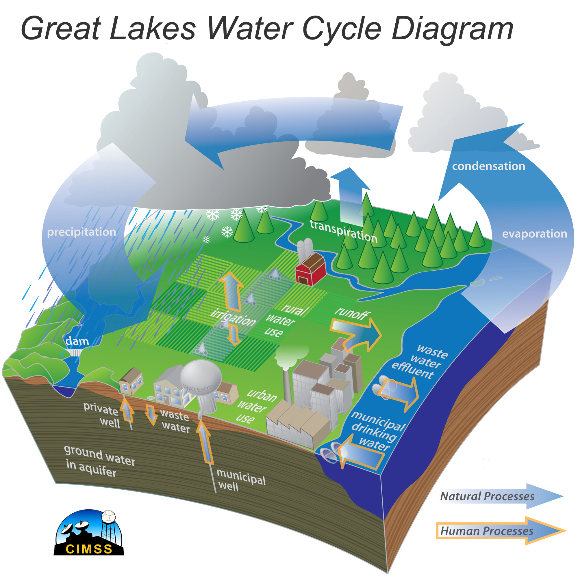 hight resolution of  modern water cycle diagram