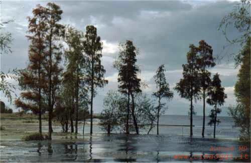 http://www.cinaoggi.it/geografia/yunnan/jpg/dali/001.jpg