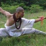 Il sito del tempio Shaolin sotto attacco hacker per l'eccessiva commercializzazione