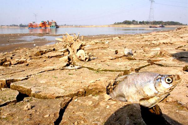 china_drought-7-Foto di siccità in Cina