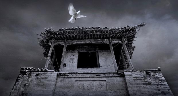 Cui Maoyuan-008