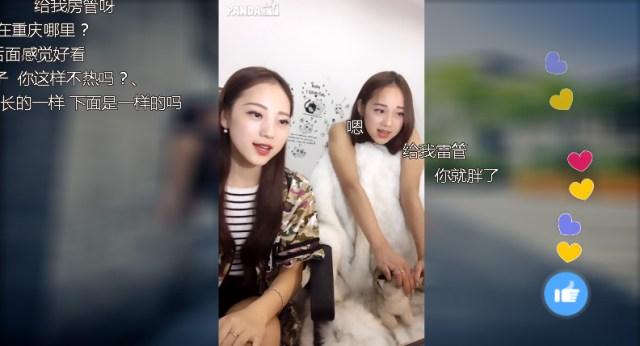 panda-tv