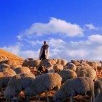 Viaggio a Zhaotong, La vera Alternativa dello Yunnan