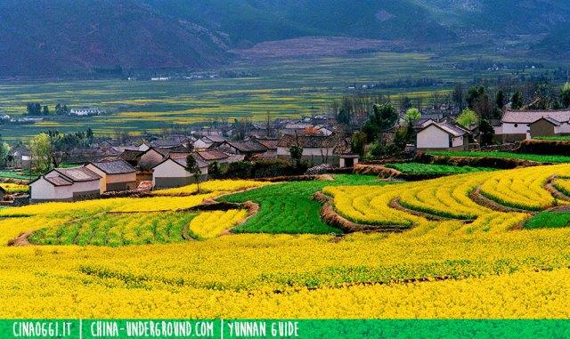 Dali villaggio Bai