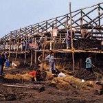 1968. Negli anni 50 e 70, decine di migliaia di giovani intellettuali, rispondendo alla chiamata del partito, giunsero nella grande regione del nord della Cina, lo Heilongjiang, per difendere e rinforzare le frontiere, bonificando le terre. Nel 1968, Weng Naiqiang cominciò a fare visita ripetutamente a questa regione.
