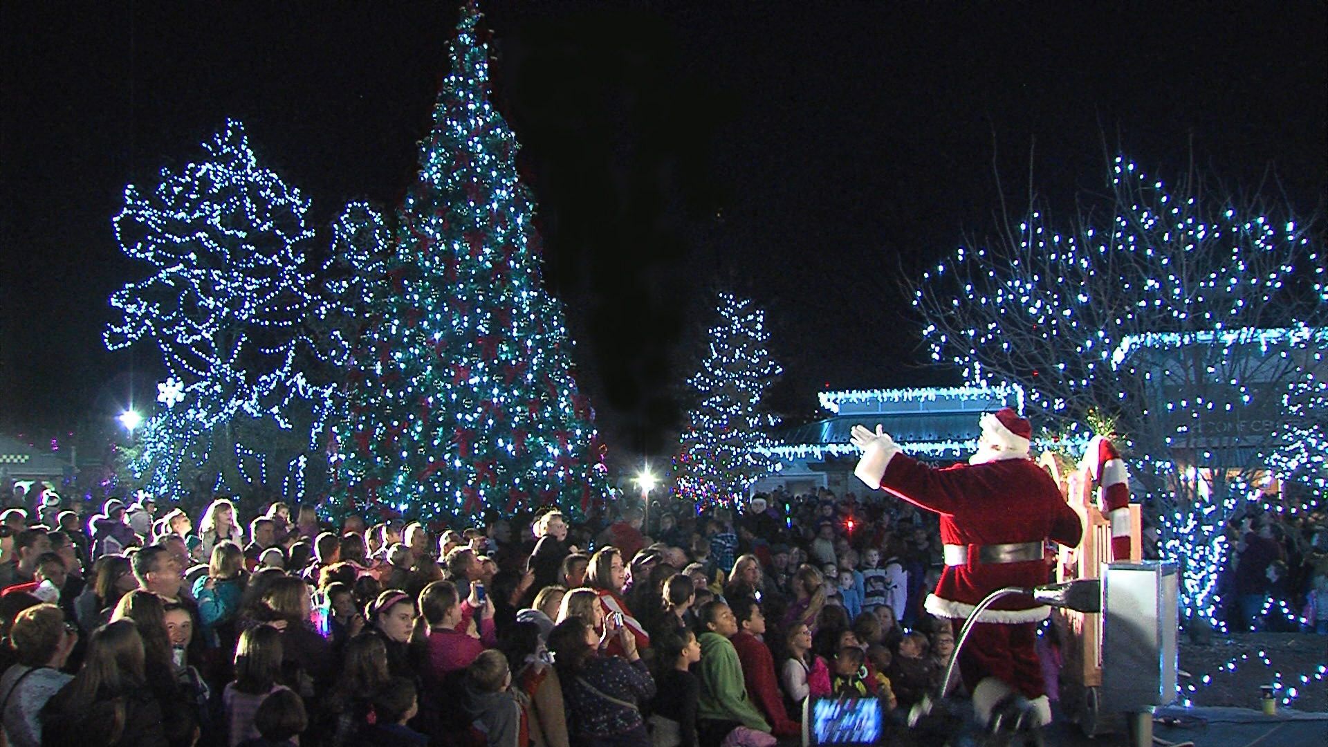 Image result for festival of lights cincinnati zoo