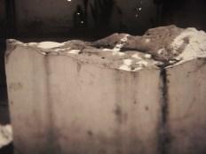 Rastros y vestigios - Fotografía Cinco Centros