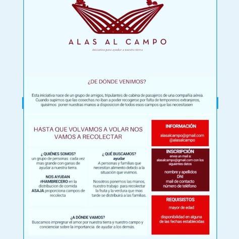 Virgen del Camino comida 7 may 20 800x400 2